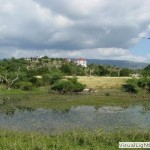 THE POND with VIEW of SANTA CRUZ MOUNTAIN